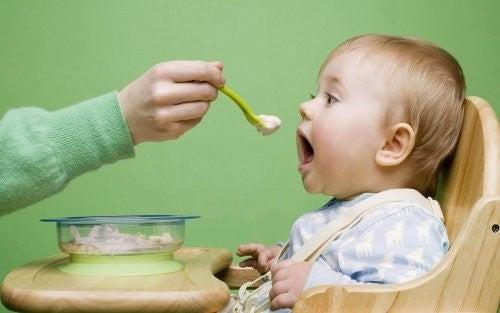 karmienie 8 miesięcznego dziecka