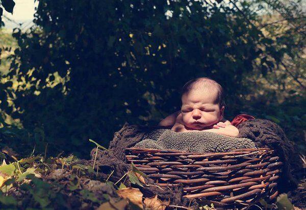 Noworodek w gnieździe pod drzewem