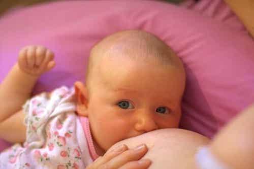 Żelazo i jego cenne właściwości w diecie Twojego dziecka
