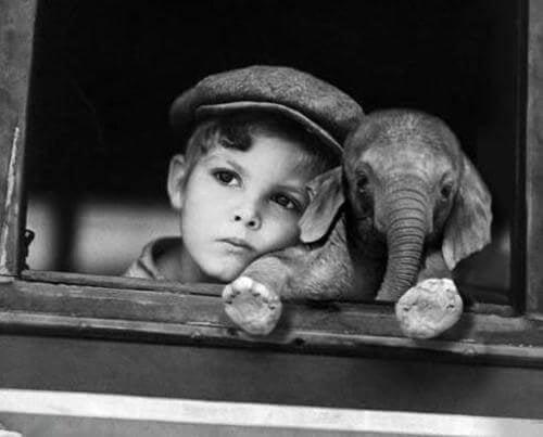 chłopiec z małym słoniątkiem
