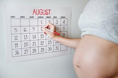 Mama w ciąży skreślająca dni w kalendarzu ściennym - wyliczanie daty porodu
