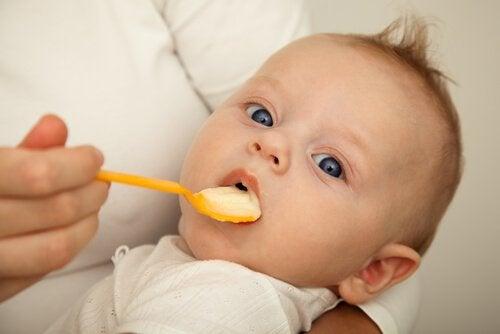 Kiedy i jak wprowadzić pokarmy stałe do diety niemowlęcia