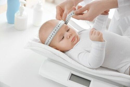 Lekarz mierzący wzrost dziecka w percentylach