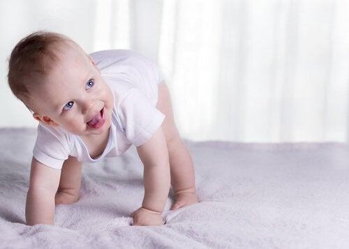 Dziecko, które rozpoczyna raczkować