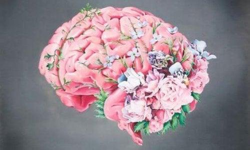 Mózg kobiety w ciąży