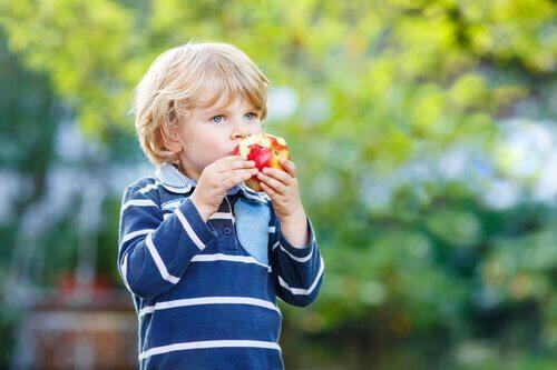 Chłopiec w parku jedzący jabłko - zdrowa dieta dla dziecka
