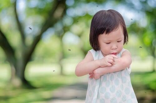 Częste ugryzienia komarów: jak pomóc dziecku?