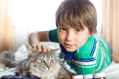 Chłopiec leżący na łóżku głaszczący kota
