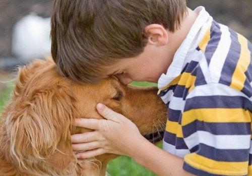 Zalety posiadania zwierząt w domu