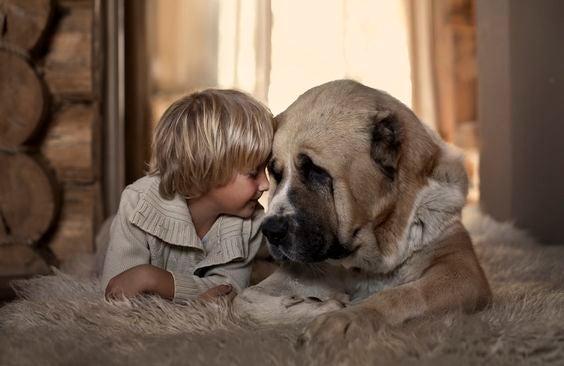 Chłopiec przytulający się do psa