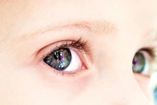 Dzieci widzą kolory inaczej niż dorośli - w jaki sposób?