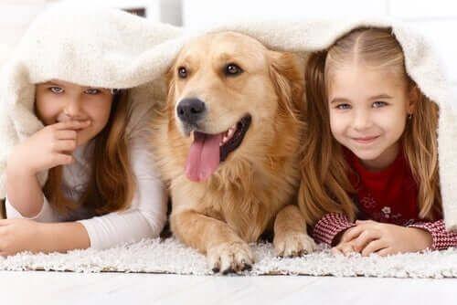 Dzieci i pies