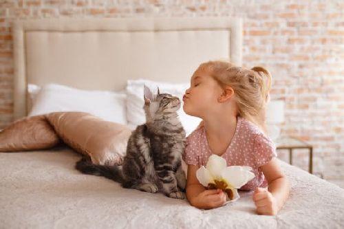 Zwierzęta dla dzieci mieszkających na wsi - 5 propozycji