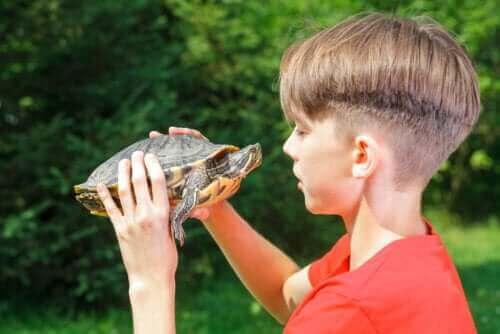 """""""Metoda na żółwia"""": wpływ na poczucie własnej wartości"""