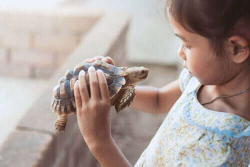 Dziecko z żółwiem