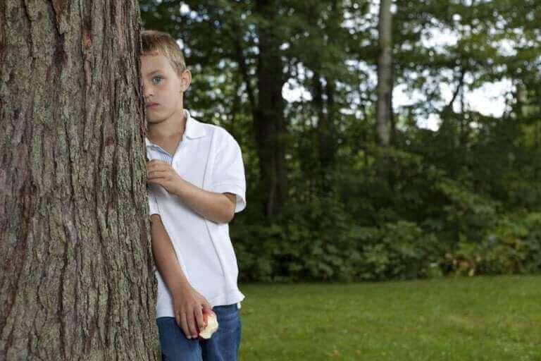 Chłopiec wyglądający zza drzewa