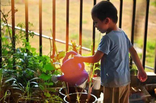Dziecko podlewa kwiaty