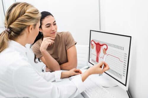 Owulacja i jej rola w cyklu reprodukcyjnym u kobiet